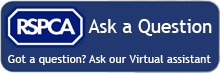 Ask our virtual assistant a question