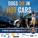 Dogs die in hot cars !!